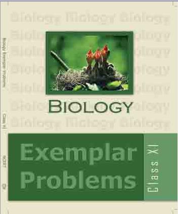 examplar-problem-english-cover11